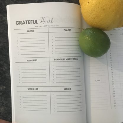 Gratitude Page by theme